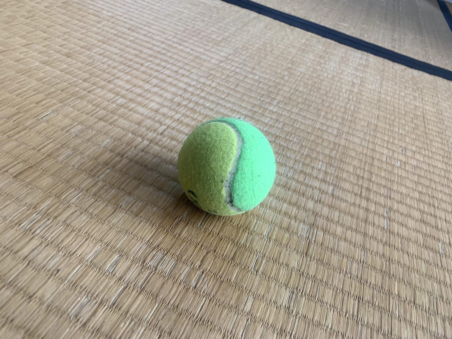 テニスボールは足底筋膜炎+坐骨神経痛対策に最適のケアグッズ