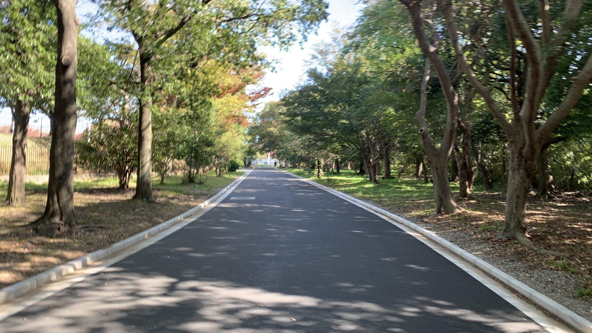 中央緑地42.195km走実施により10月の月間走行距離は400km超でフィニッシュ