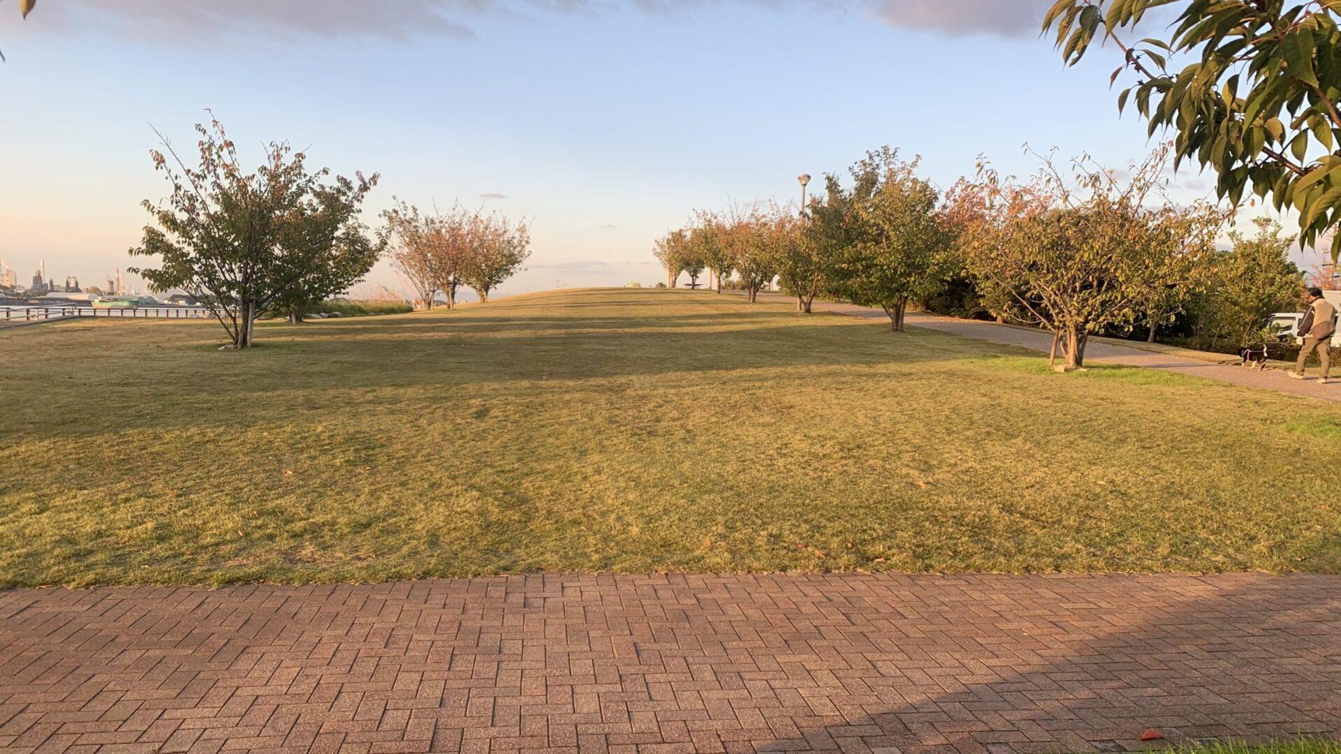 11月の早朝練習は高速ジョグ+坂道ダッシュと量より質重視メニューに変異中